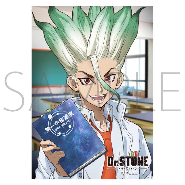 Dr.STONE JF2021限定 生ブロマイド(�CJF受注(限定・先行))
